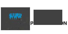 _webpresentation